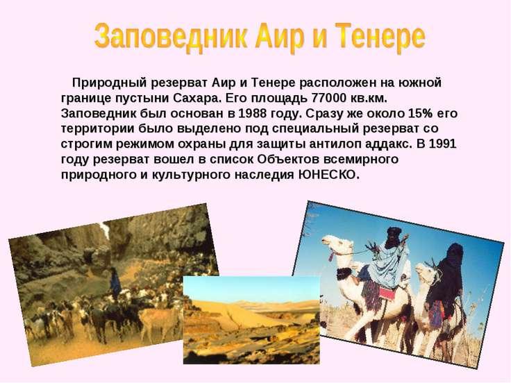 Природный резерват Аир и Тенере расположен на южной границе пустыни Сахара. Е...