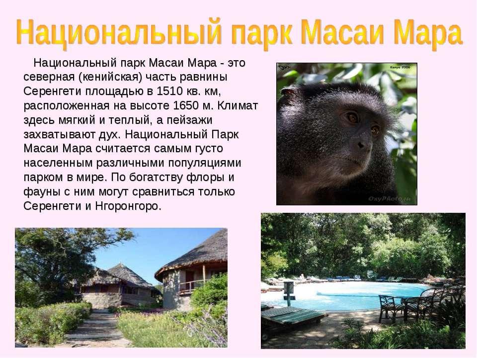Национальный парк Масаи Мара - это северная (кенийская) часть равнины Серенге...
