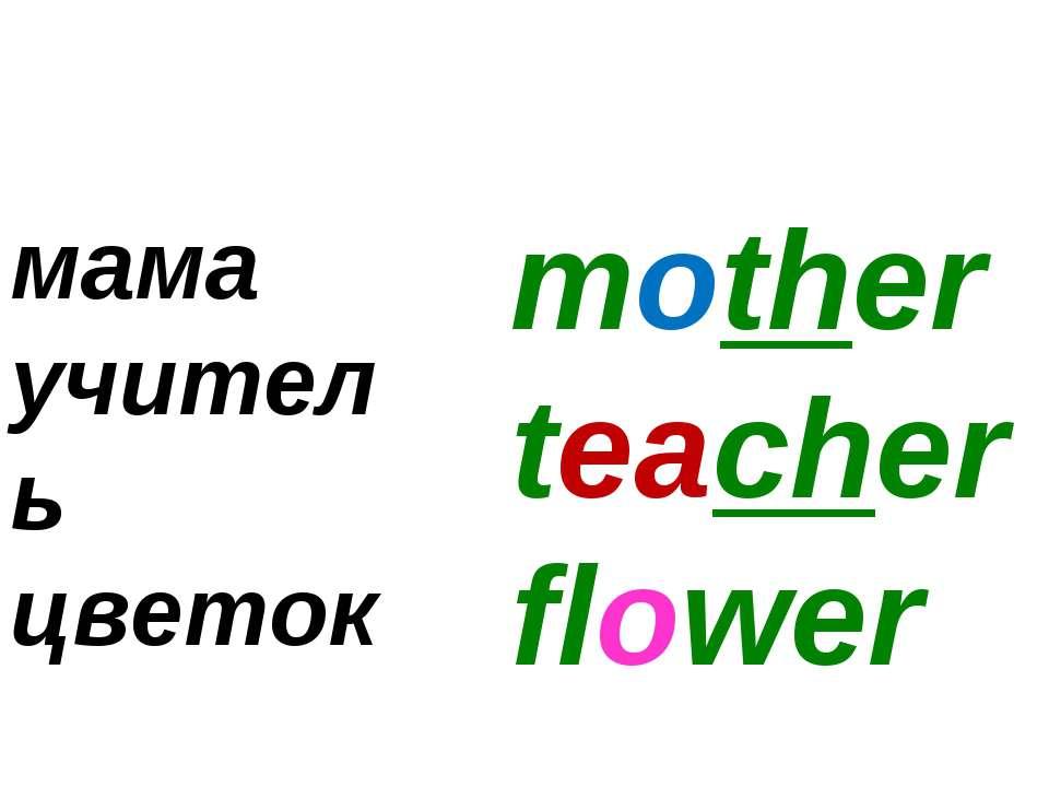 mother teacher flower мама учитель цветок