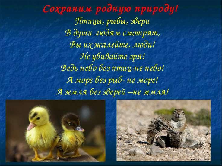 Сохраним родную природу! Птицы, рыбы, звери В души людям смотрят, Вы их жалей...