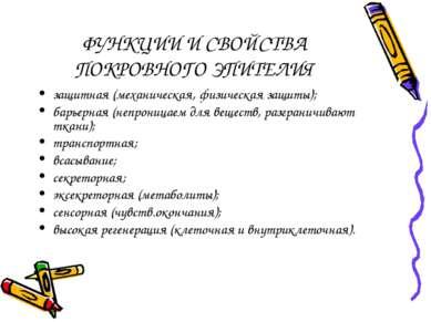 ФУНКЦИИ И СВОЙСТВА ПОКРОВНОГО ЭПИТЕЛИЯ защитная (механическая, физическая защ...