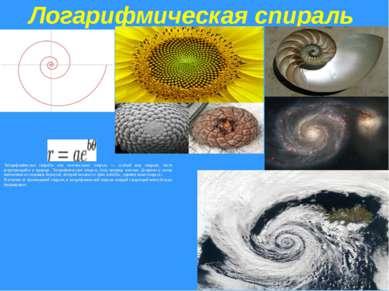 Логарифмическая спираль Логарифми ческая спира ль или изогональная спираль — ...