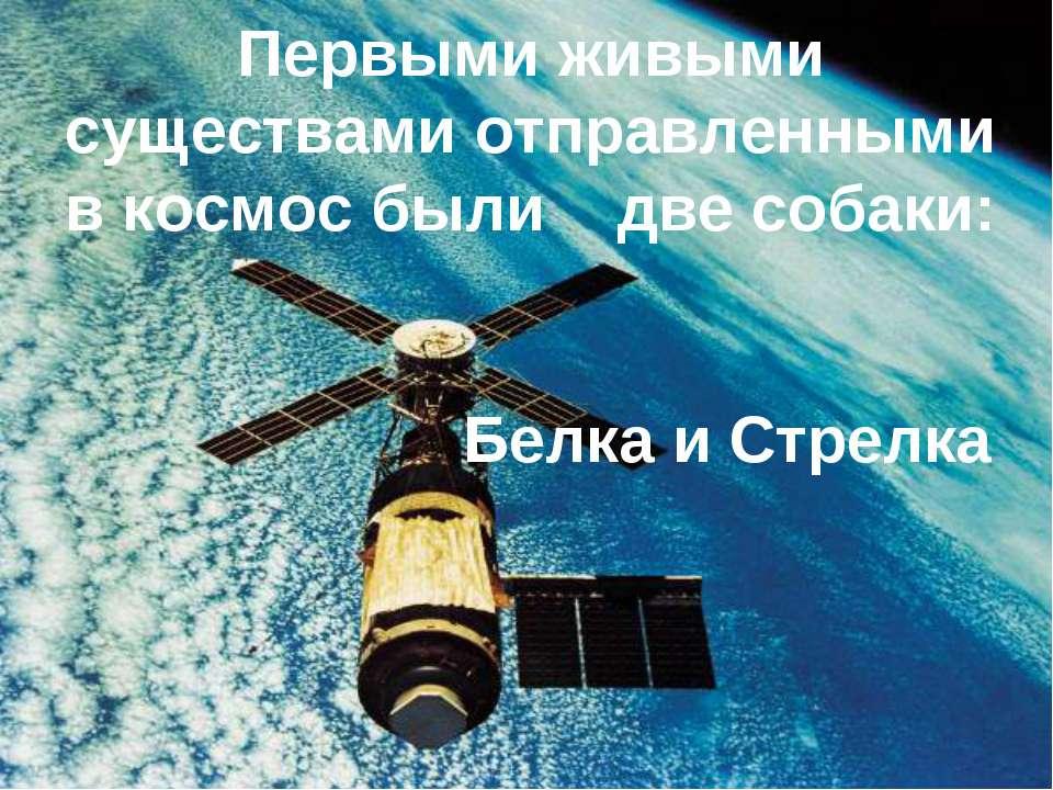 Первыми живыми существами отправленными в космос были две собаки: Белка и Стр...