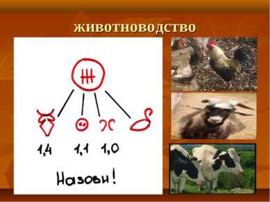 животноводство
