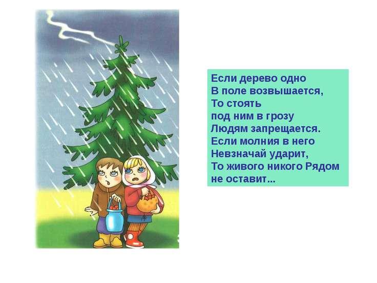 Если дерево одно В поле возвышается, То стоять под ним в грозу Людям запрещае...