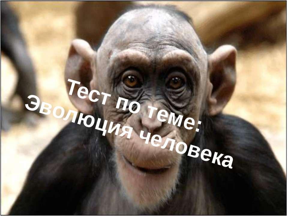 Тест по теме: Эволюция человека