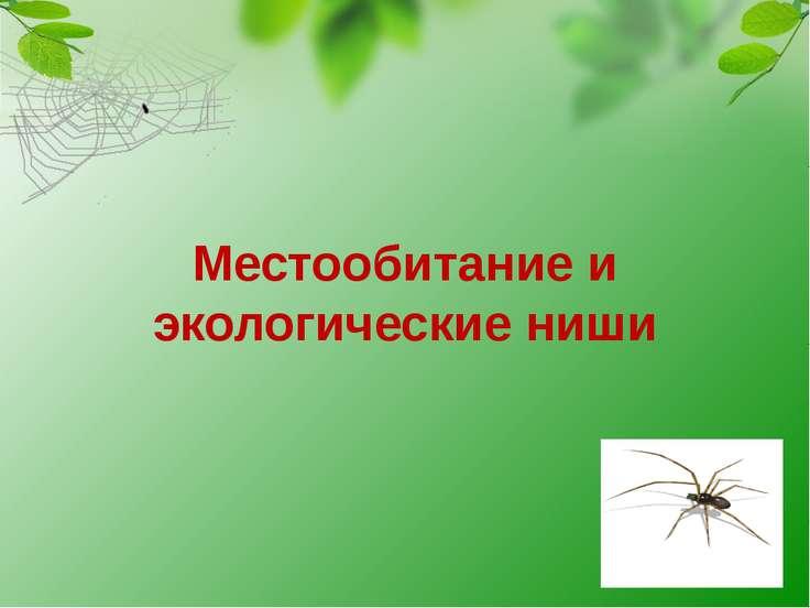 Местообитание и экологические ниши