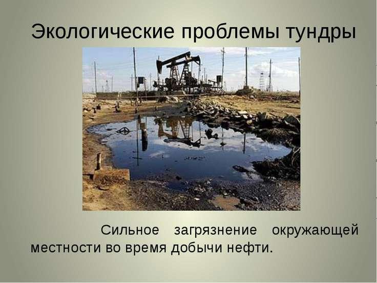 Экологические проблемы тундры Сильное загрязнение окружающей местности во вре...
