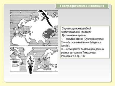 Случаи крупномасштабной территориальной изоляции Дизъюнктные ареалы: 1 — голу...