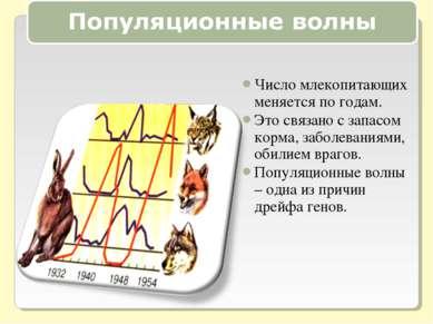 Число млекопитающих меняется по годам. Это связано с запасом корма, заболеван...