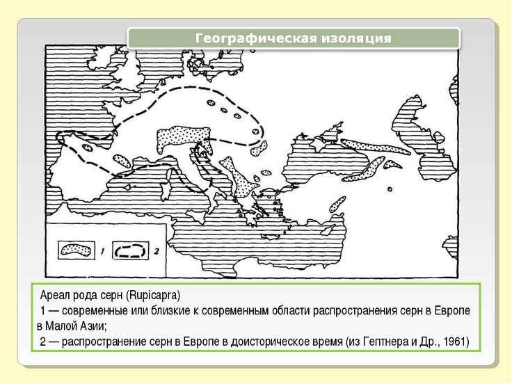 Ареал рода серн (Rupicapra) 1 — современные или близкие к современным области...
