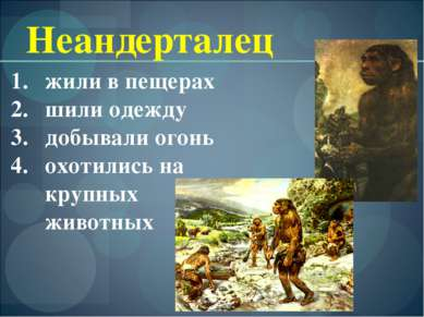 Неандерталец жили в пещерах шили одежду добывали огонь охотились на крупных ж...