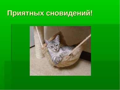 Приятных сновидений!