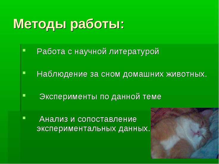 Методы работы: Работа с научной литературой Наблюдение за сном домашних живот...