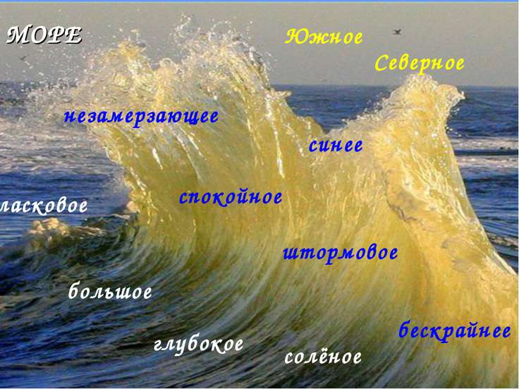 глубокое большое спокойное штормовое синее ласковое Южное Северное незамерзаю...