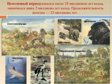 Неогеновый период начался около 25 миллионов лет назад, закончился лишь 2 мил...
