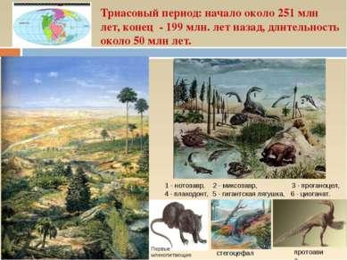 Триасовый период: начало около 251 млн лет, конец - 199 млн. лет назад, длите...