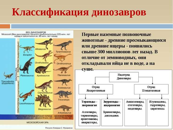 Классификация динозавров Первые наземные позвоночные животные - древние пресм...