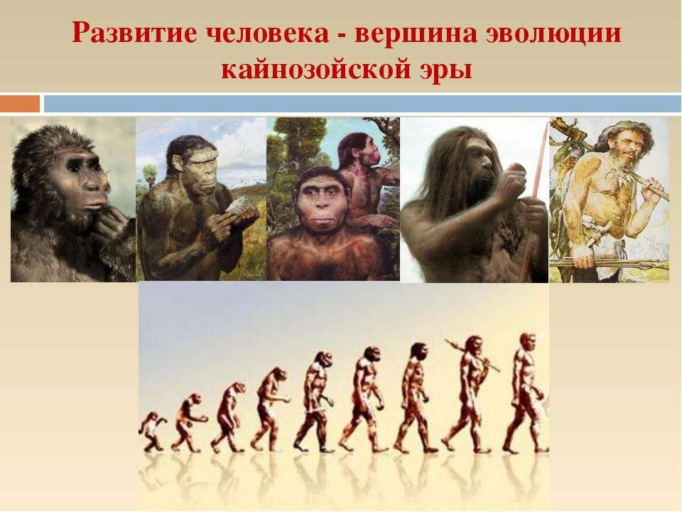 Развитие человека - вершина эволюции кайнозойской эры