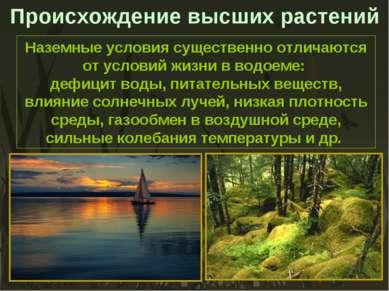 Наземные условия существенно отличаются от условий жизни в водоеме: дефицит в...