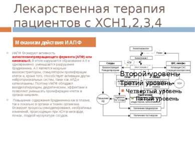 Лекарственная терапия пациентов с ХСН1,2,3,4 ИАПФ блокируют активность ангиот...