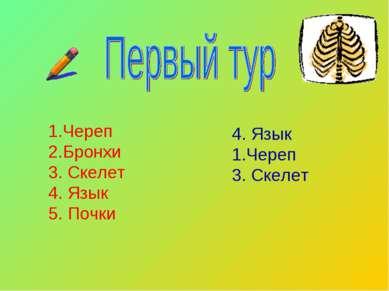 Череп 2.Бронхи 3. Скелет 4. Язык 5. Почки 4. Язык Череп 3. Скелет