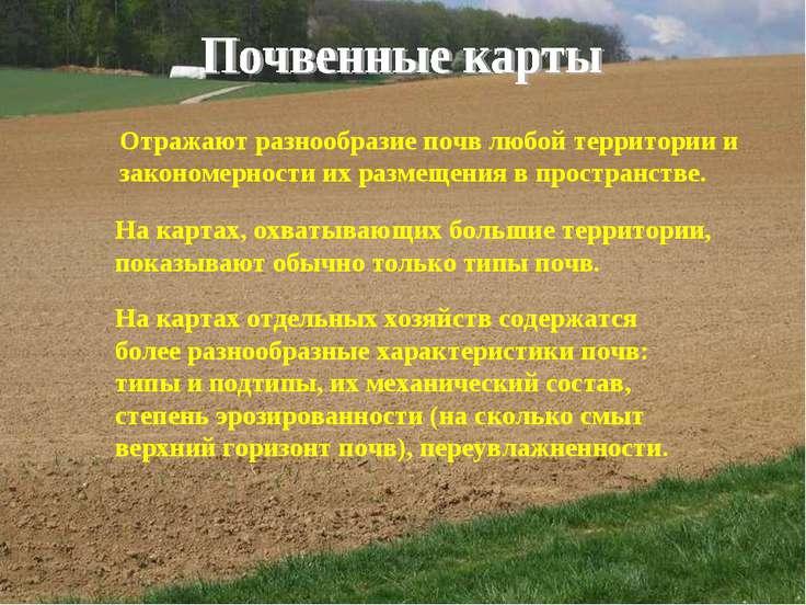 Отражают разнообразие почв любой территории и закономерности их размещения в ...