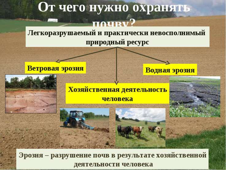 От чего нужно охранять почву? Легкоразрушаемый и практически невосполнимый пр...