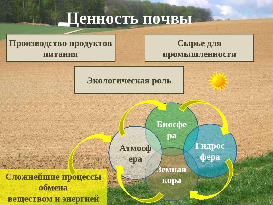 Ценность почвы Производство продуктов питания Сырье для промышленности Эколог...