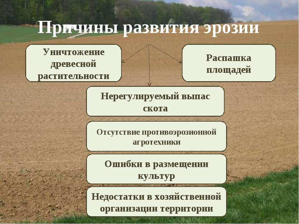 Причины развития эрозии Уничтожение древесной растительности Распашка площаде...