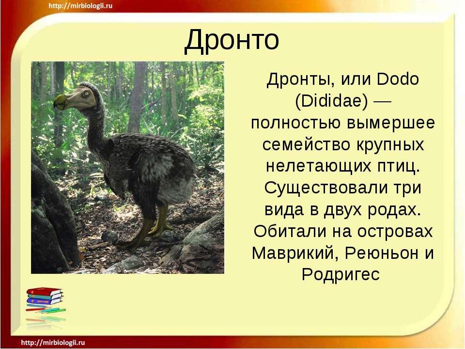 Дронто Дронты, или Dodo (Dididae)— полностью вымершее семейство крупных неле...