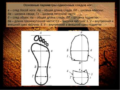 Основные параметры одиночных следов ног: а – след босой ноги: Аа – общая длин...