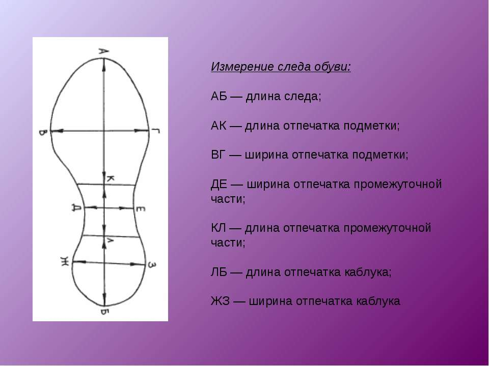 Измерение следа обуви: АБ — длина следа; АК — длина отпечатка подметки; ВГ — ...