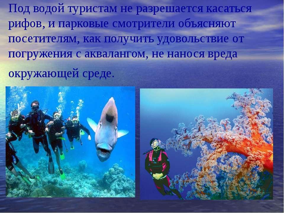 Под водой туристам не разрешается касаться рифов, и парковые смотрители объяс...