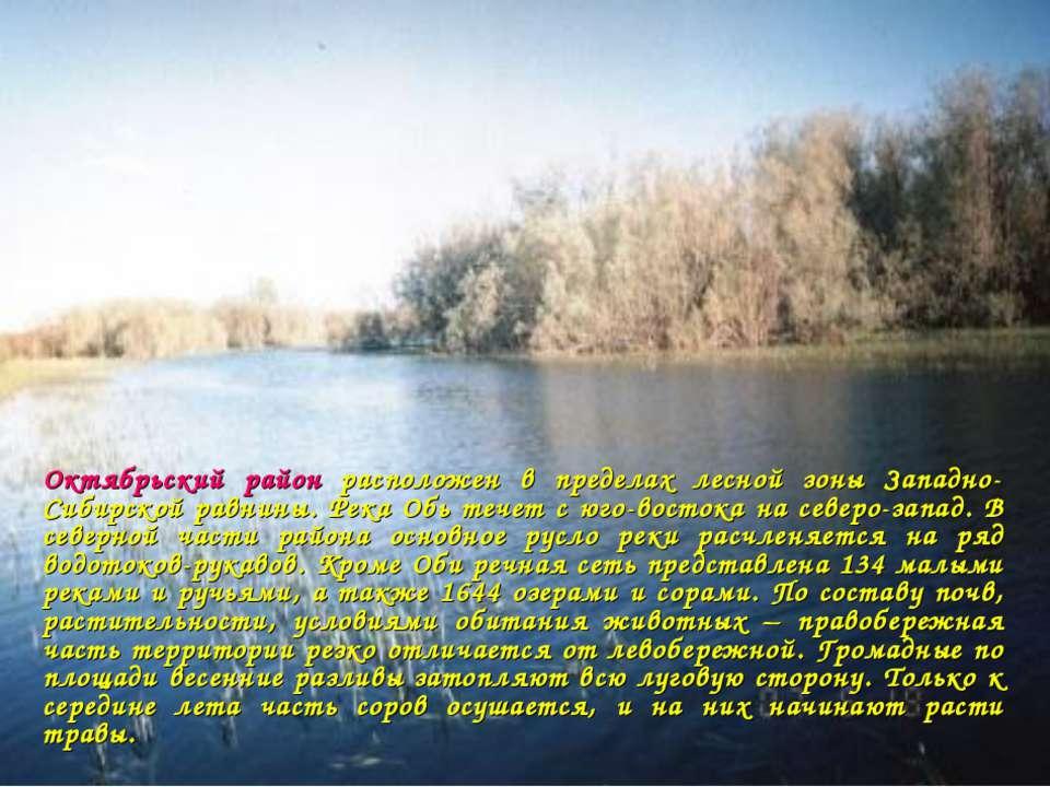 Октябрьский район расположен в пределах лесной зоны Западно-Сибирской равнины...