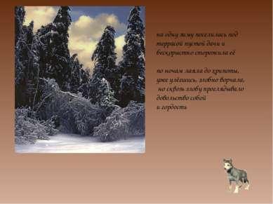 на одну зиму поселилась под террасой пустой дачи и бескорыстно сторожила её п...