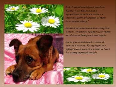 всей своею собачьей душой расцвела Кусака. У неё было имя, она принадлежала л...