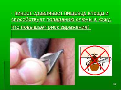 * - пинцет сдавливает пищевод клеща и способствует попаданию слюны в кожу, чт...