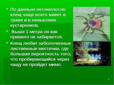 * По данным энтомологов: клещ чаще всего живет в траве и в невысоких кустарни...