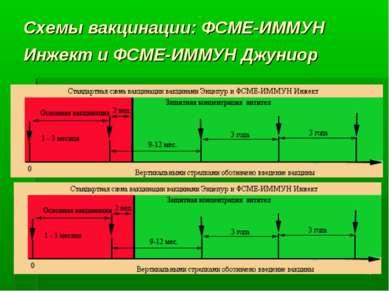 * Схемы вакцинации: ФСМЕ-ИММУН Инжект и ФСМЕ-ИММУН Джуниор