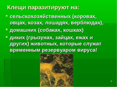 * Клещи паразитируют на: сельскохозяйственных (коровах, овцах, козах, лошадях...