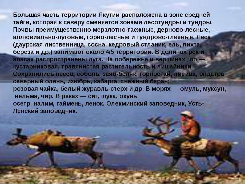 Большая часть территории Якутии расположена в зоне средней тайги, которая к с...