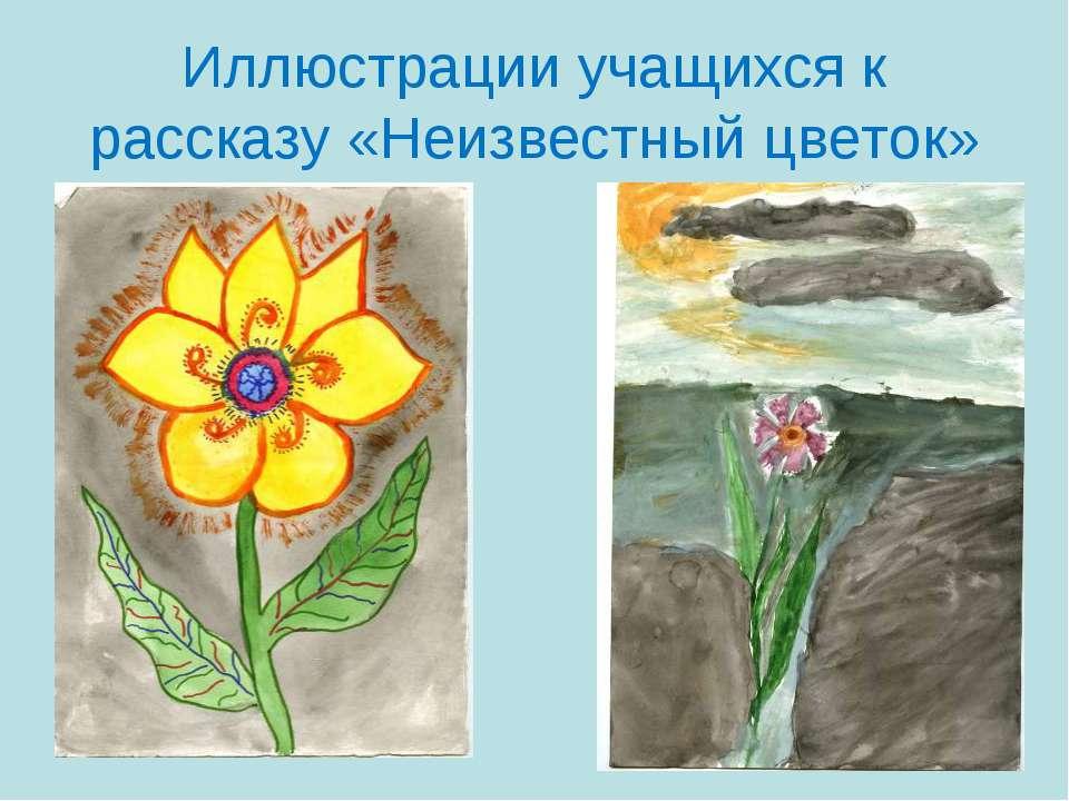 Иллюстрации учащихся к рассказу «Неизвестный цветок»