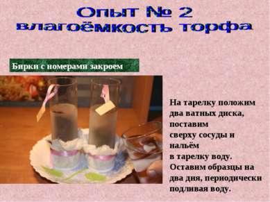 На тарелку положим два ватных диска, поставим сверху сосуды и нальём в тарелк...