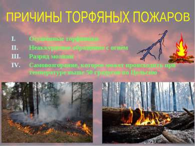 Осушённые торфяники Неаккуратное обращение с огнём Разряд молнии Самовозгоран...