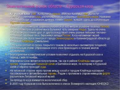 Замечательный уголок области – Куршская коса Ку ршская коса (лит. Kuršių neri...