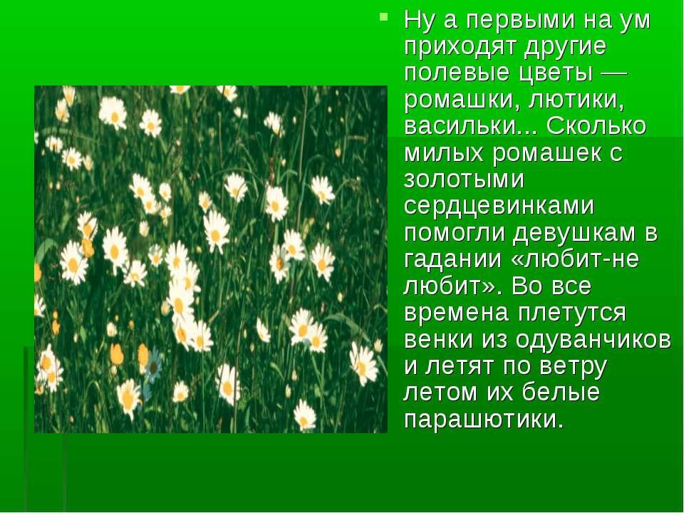 Ну а первыми на ум приходят другие полевые цветы — ромашки, лютики, васильки....