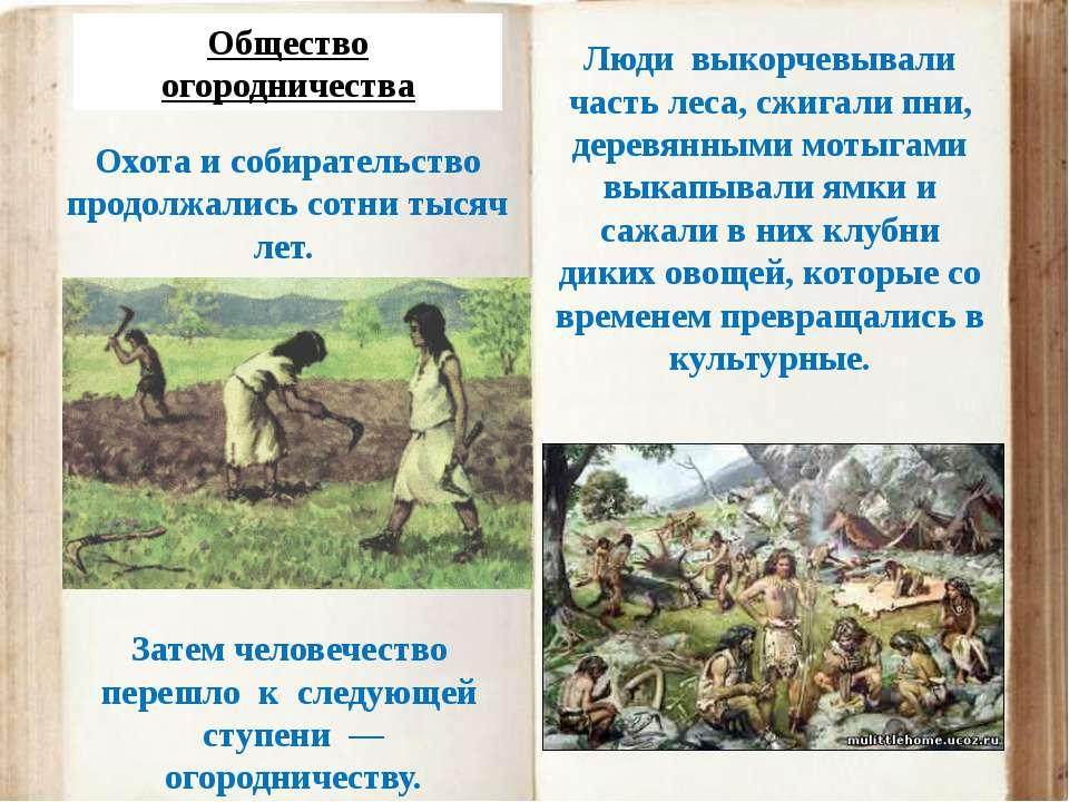 Общество огородничества Охота и собирательство продолжались сотни тысяч лет. ...