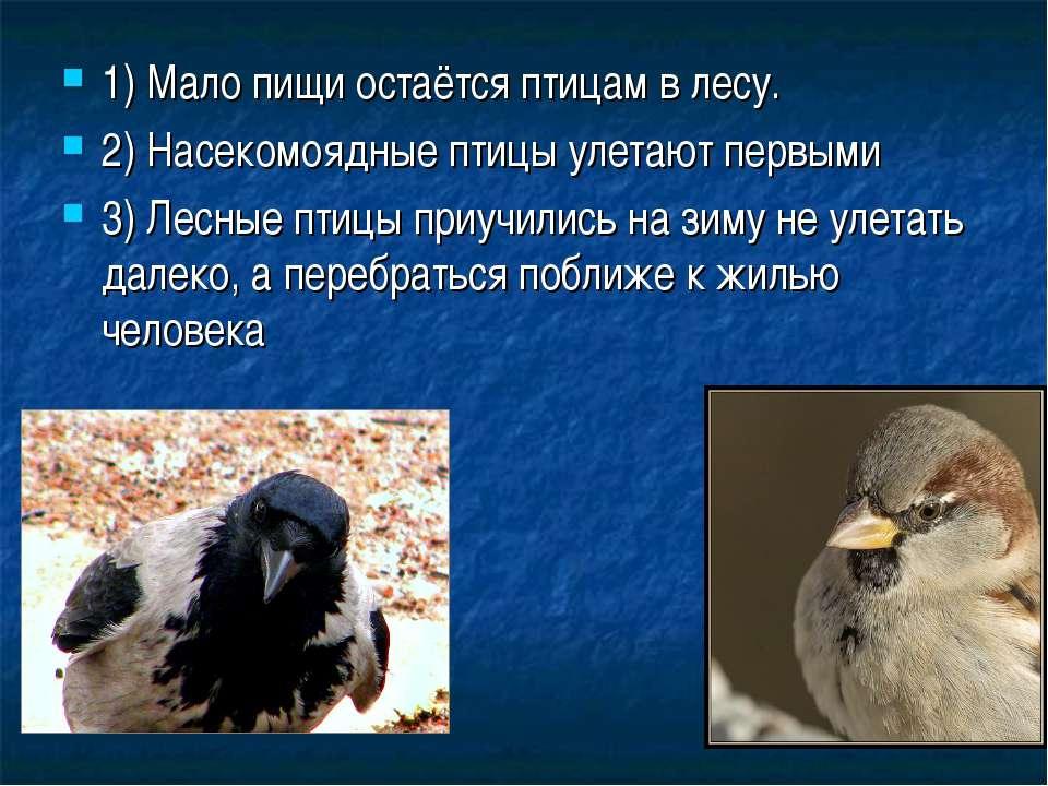 1) Мало пищи остаётся птицам в лесу. 2) Насекомоядные птицы улетают первыми 3...