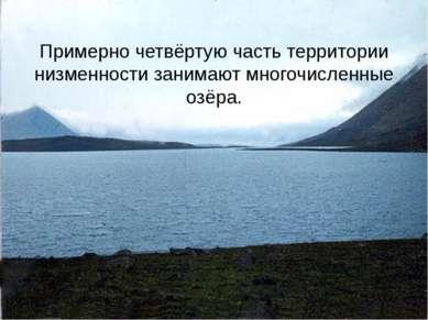Примерно четвёртую часть территории низменности занимают многочисленные озёра.